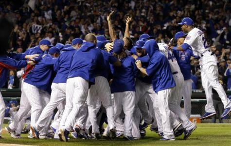 Cubs' 2016 hopes high