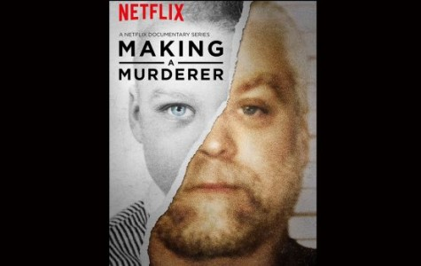 Making a Murderer Netflix series shocks public