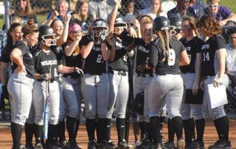 Lady Wildcat Softball, Camp improving this season