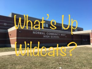 Club Fair helps Wildcats get involved