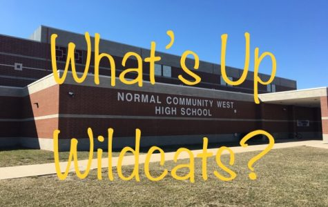 Check out the new What's Up Wildcats!